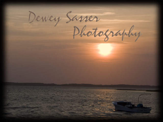 Dewey Sasser Photography